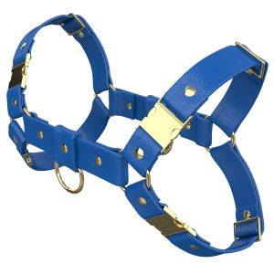 One Size Bulldog Harness – Standard Leather – Blue - Gold Metal Fittings
