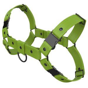One Size Bulldog Harness – Standard Leather – Green - Gun Metal Black Fittings