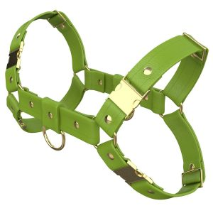 One Size Bulldog Harness – Standard Leather – Green - Gold Metal Fittings