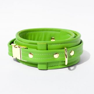 Collar – Standard Leather – Green - Gold Metal Fittings