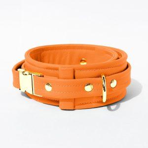 Collar – Standard Leather – Orange - Gold Metal Fittings