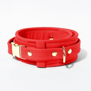 Collar – Standard Leather – Red - Gold Metal Fittings