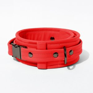 Collar – Standard Leather – Red - Gun Metal Black Fittings