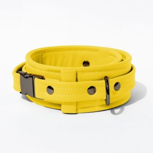 Collar – Standard Leather – Yellow - Gun Metal Black Fittings
