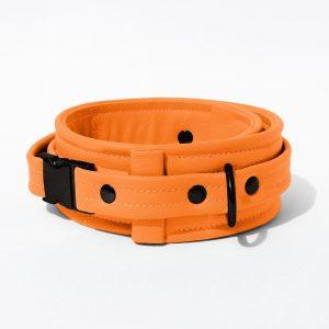 Collar – Standard Leather – Orange - Black Plastic Fittings