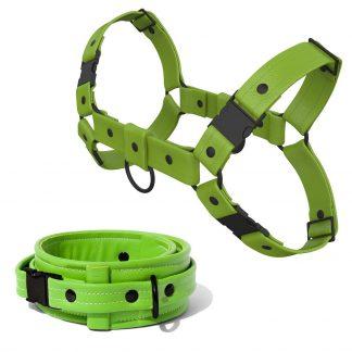 Bulldog Harness + Collar – Standard Leather – Green - Black Plastic Fittings