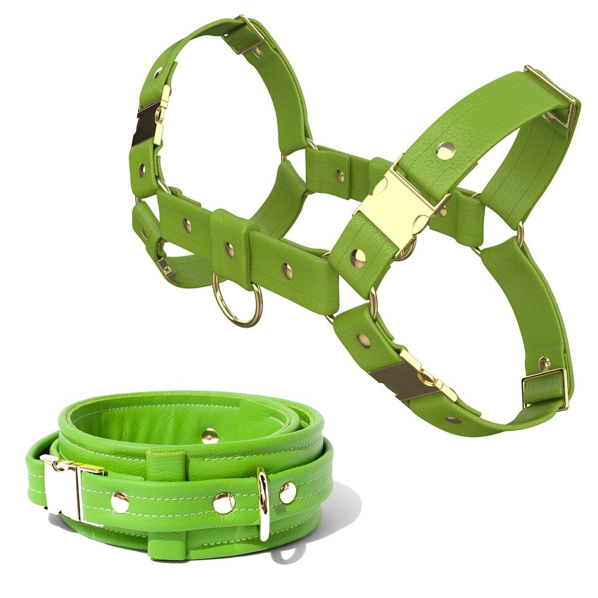 Bulldog Harness + Collar – Standard Leather – Green - Gold Metal Fittings