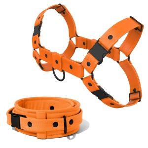 Bulldog Harness + Collar – Standard Leather – Orange - Black Plastic Fittings