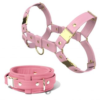 Bulldog Harness + Collar – Standard Leather – Pink - Gold Metal Fittings