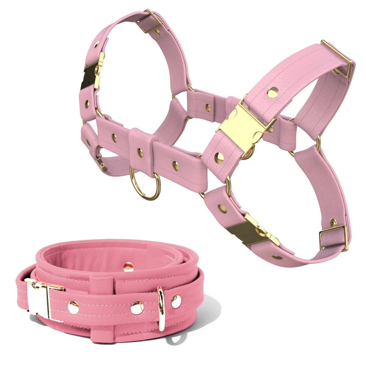 Bulldog Harness + Collar – Standard Leather – Pink - Gold Metal Fittings
