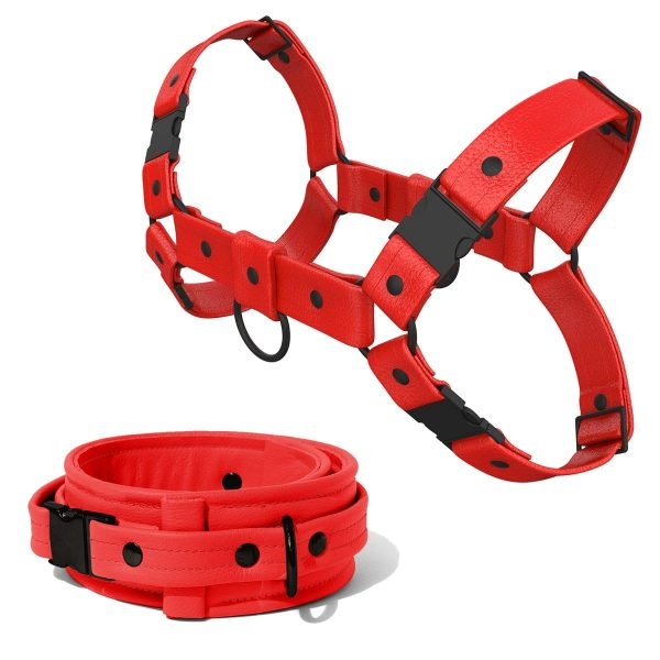Bulldog Harness + Collar – Standard Leather – Red - Black Plastic Fittings