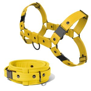 Bulldog Harness + Collar – Standard Leather – Yellow - Gun Metal Black Fittings