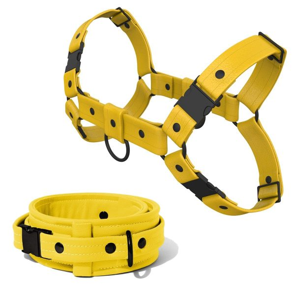Bulldog Harness + Collar – Standard Leather – Yellow - Black Plastic Fittings
