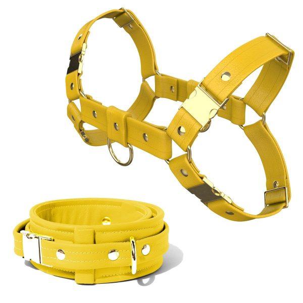 Bulldog Harness + Collar – Standard Leather – Yellow - Gold Metal Fittings
