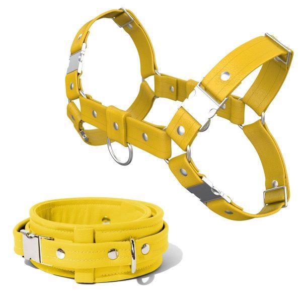 Bulldog Harness + Collar – Standard Leather – Yellow - Silver Metal Fittings