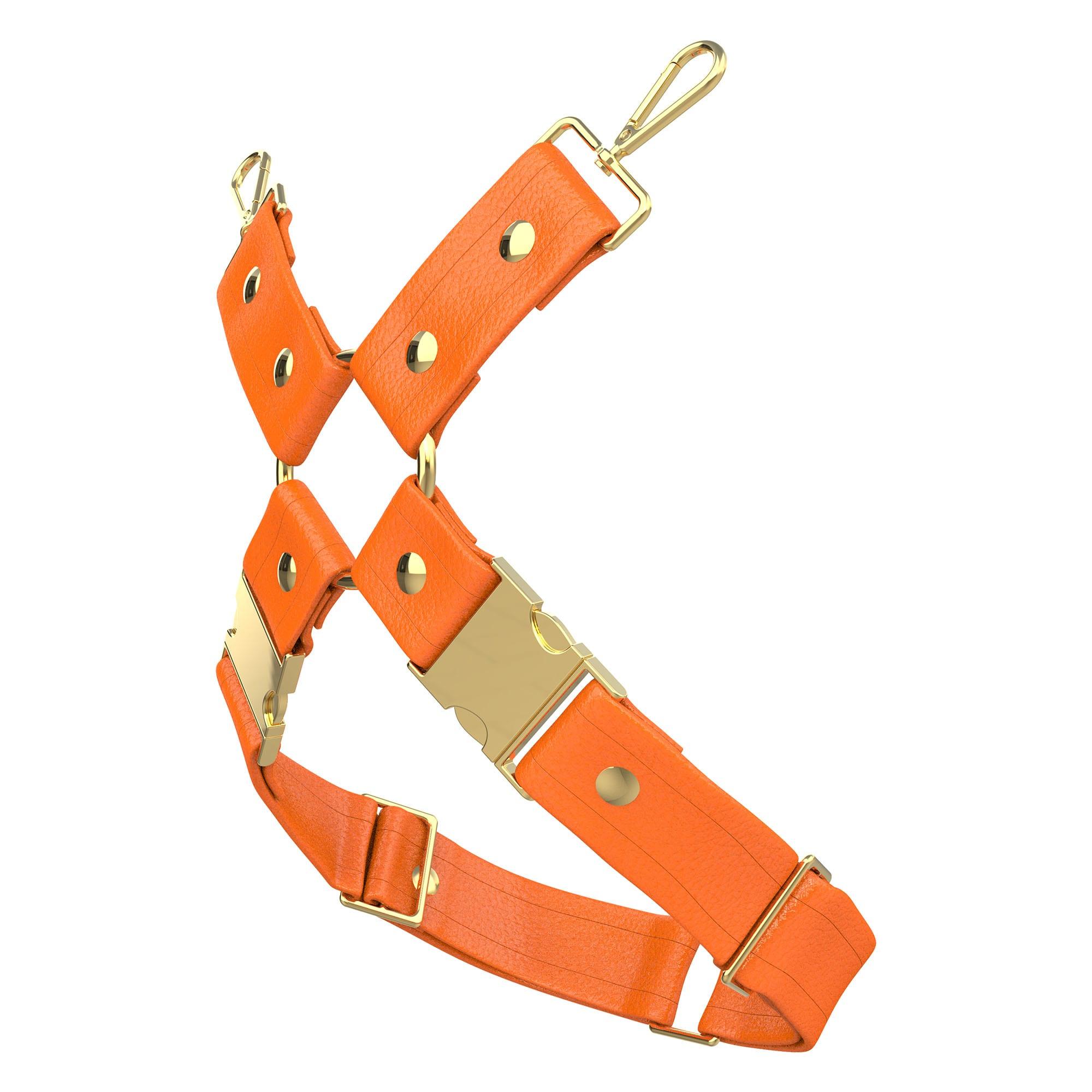 One Size Leg Harness – Standard Leather – Orange - Gold Metal Fittings