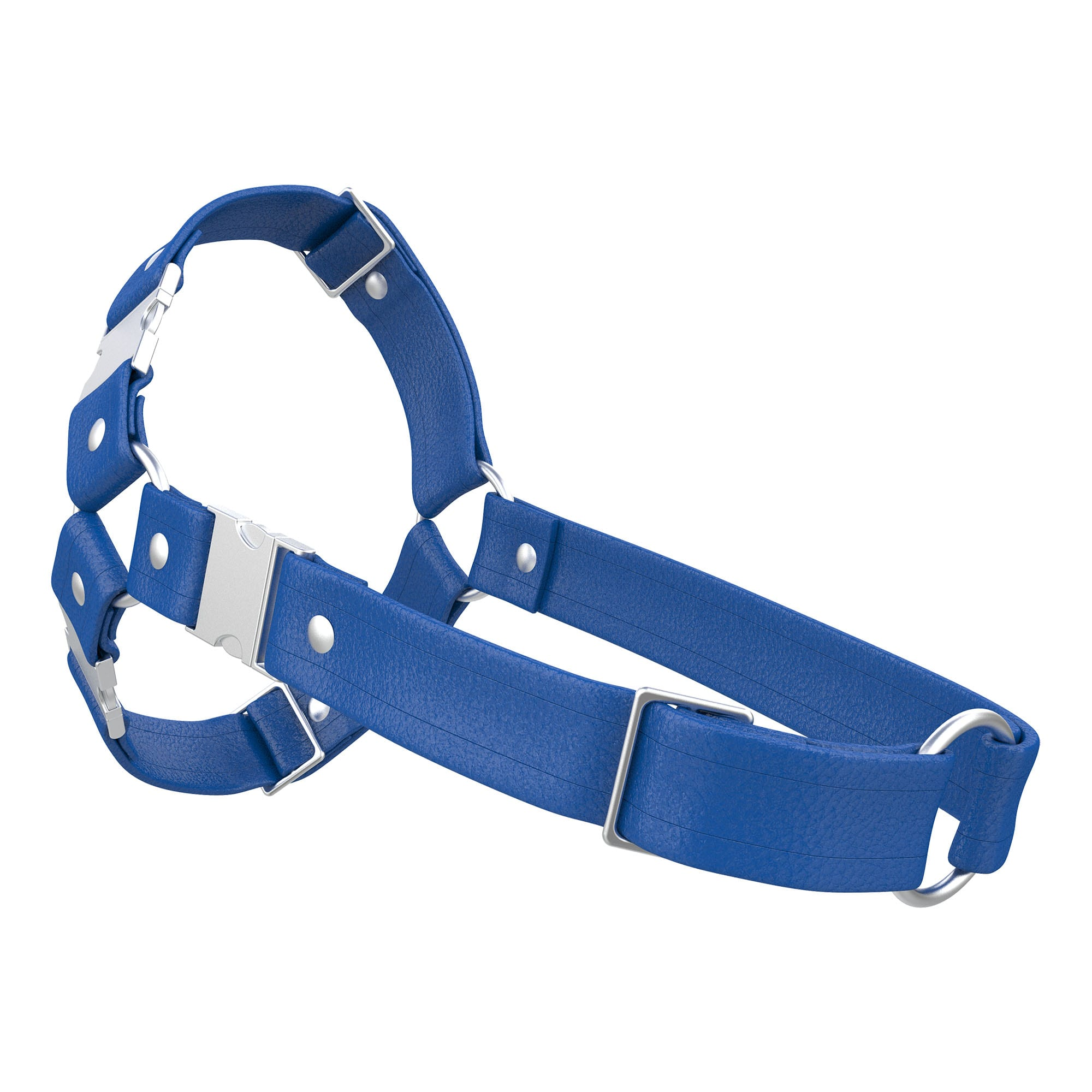 One Size Spartan Harness – Standard Leather – Blue - Silver Metal Fittings